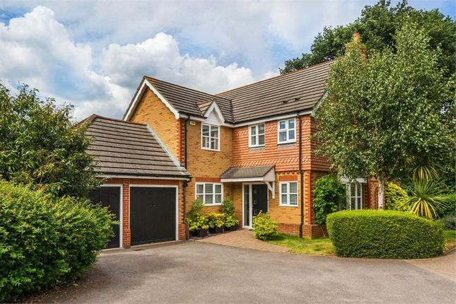 Thumbnail Detached house to rent in Maitland Close, Walton-On-Thames, Surrey