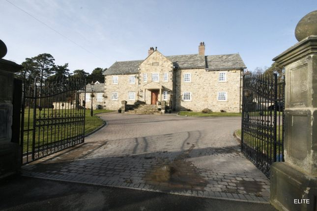 Thumbnail Detached house to rent in Lanchester, Durham