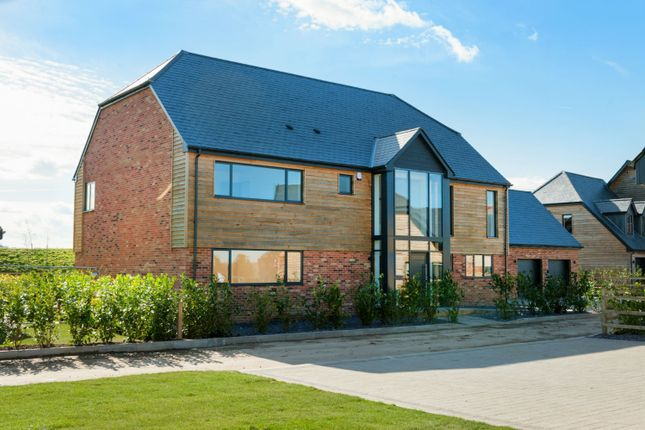 Thumbnail Detached house for sale in Kiln Drive, Hammill Road, Woodensborough