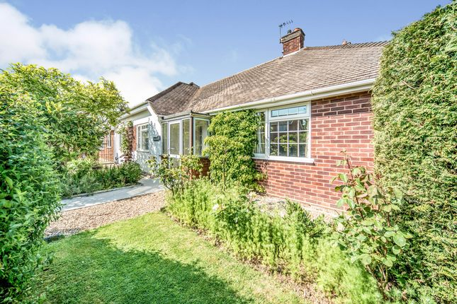 Thumbnail Bungalow to rent in Pipit Rise, Bedford