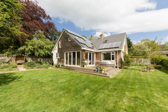 Thumbnail Detached house for sale in Morningside, Corbridge, Northumberland