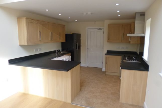 Thumbnail Semi-detached house to rent in Peveril Road, Beeston