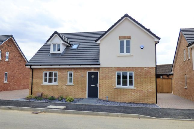 Thumbnail Detached house for sale in Maple Gardens, Stotfold
