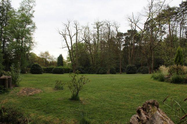Room 14 of The Woodlands, Pirbright Road, Normandy GU3