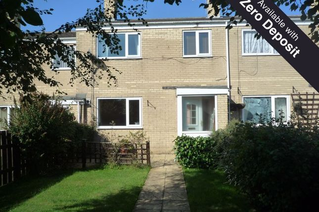 Thumbnail Terraced house to rent in Glenwood, Ashington