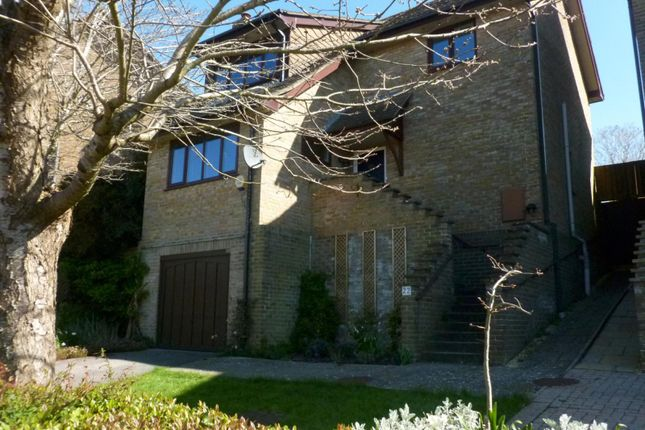 Thumbnail Detached house to rent in Bowland Rise, New Milton