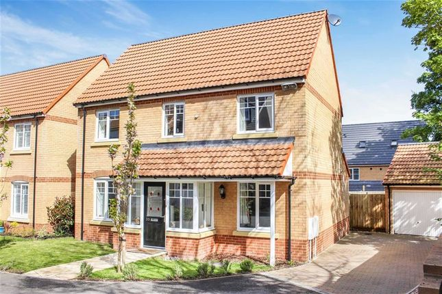 Thumbnail Property for sale in York Rise, Bideford