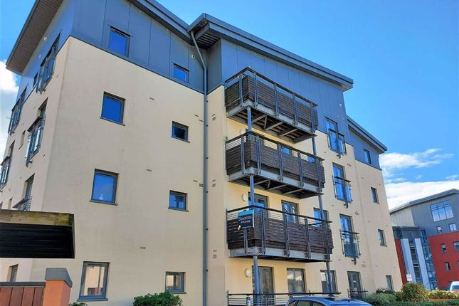 St Christophers Court, Marina, Swansea SA1