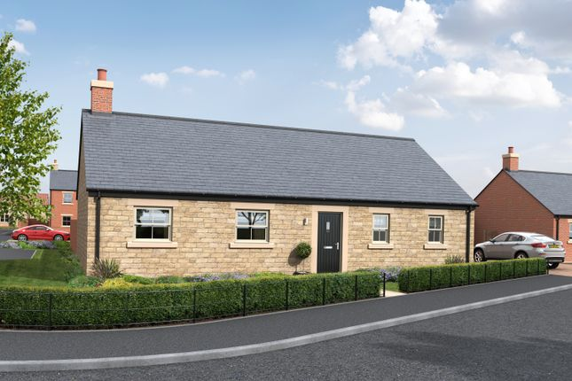 Thumbnail Detached bungalow for sale in Creighton Place, Holmefield, Embleton