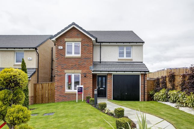 Thumbnail Detached house for sale in Burnside View, Coatbridge