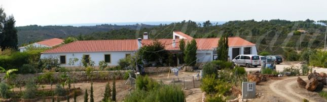 Thumbnail Farm for sale in Aljezur, Aljezur, Algarve, Portugal