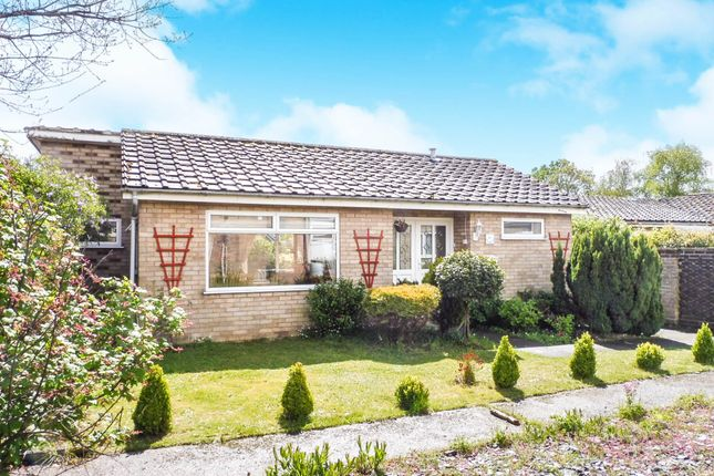 Thumbnail Detached bungalow for sale in Brentwood, Norwich