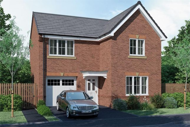 "Thumbnail Detached house for sale in ""The Tweed"" at Ambridge Way, Seaton Delaval, Whitley Bay"