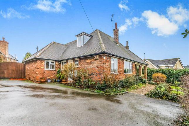 Thumbnail Detached bungalow for sale in Little Lane, Wollaston, Wellingborough