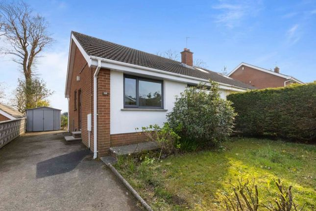 Thumbnail Semi-detached house for sale in Heathermount Court, Comber, Newtownards