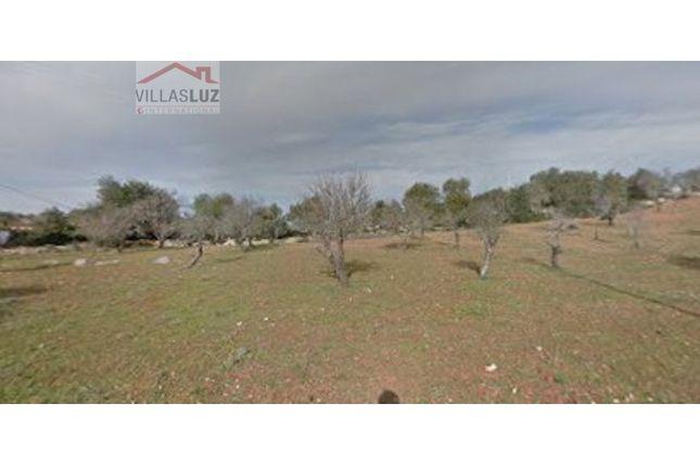 Thumbnail Land for sale in Centro (Alcantarilha), Alcantarilha E Pêra, Silves