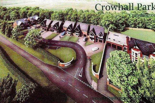 Thumbnail Detached house for sale in Crowhallpark, Cramlington