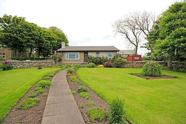 Thumbnail Detached bungalow for sale in Knockglass Road, Dunbeath, Caithness
