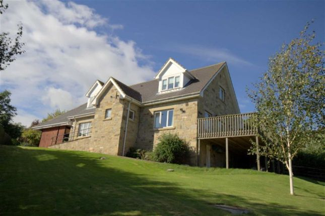 Thumbnail Detached house for sale in Five Acres, Wooler, Northumberland