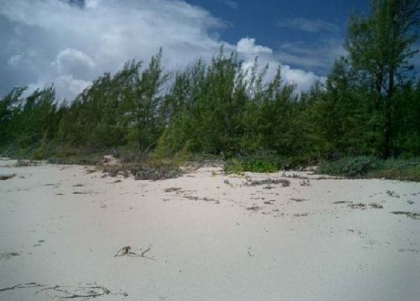 Land for sale in Old Kerr's, Abaco, The Bahamas