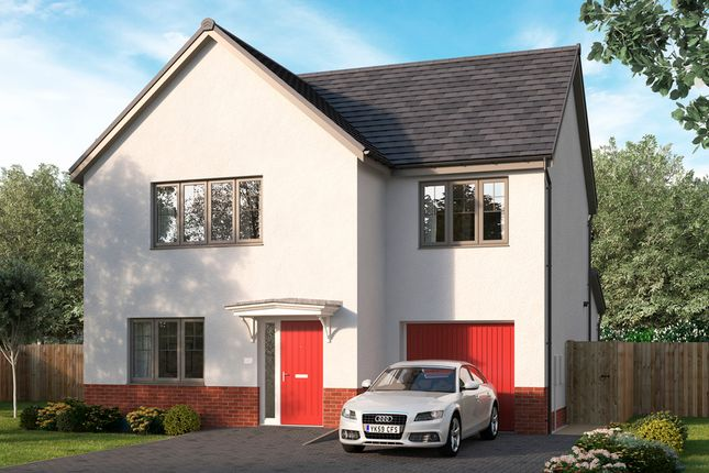 Thumbnail Detached house for sale in Stirling Road, Larbert