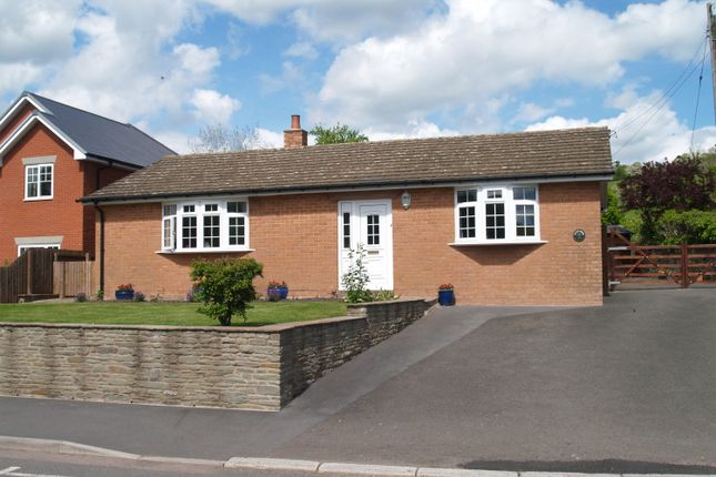 Thumbnail Bungalow for sale in Ewyas Harold, Hereford