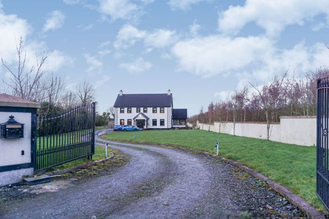 Thumbnail Detached house for sale in Milltown Road, Dungannon