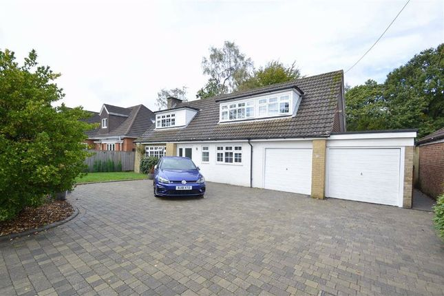 Thumbnail Property for sale in Heathway, Caterham, Surrey