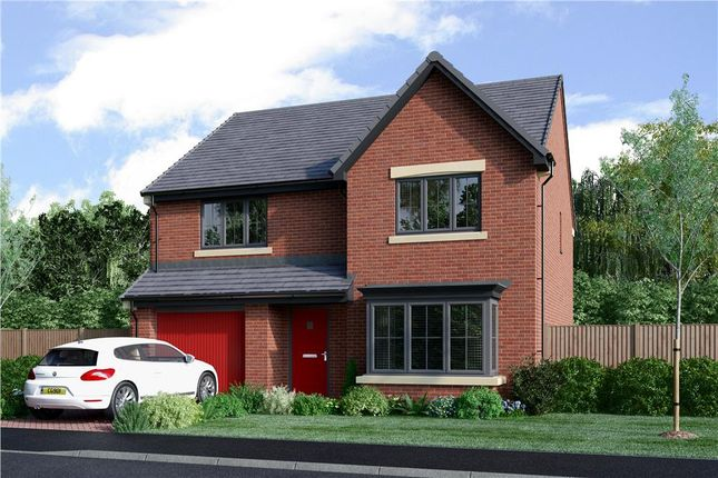 "Thumbnail Detached house for sale in ""The Chadwick"" at School Aycliffe, Newton Aycliffe"