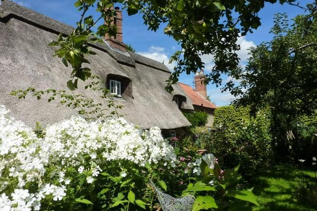 Thumbnail Cottage for sale in The Green, Collingham, Newark