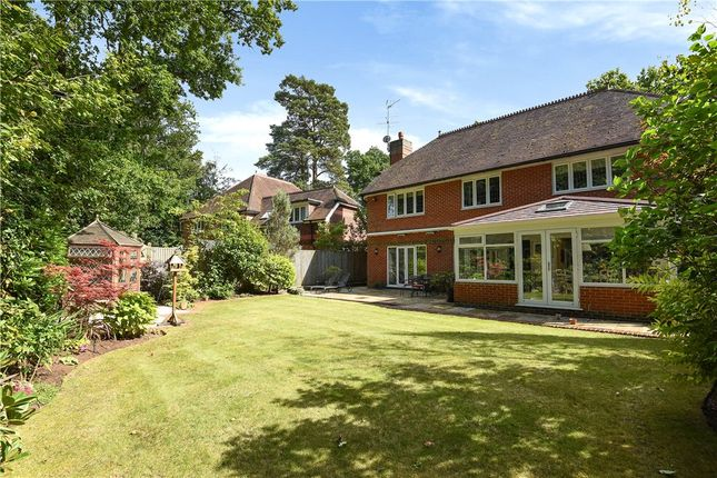 Thumbnail Detached house for sale in The Devils Highway, Crowthorne, Berkshire