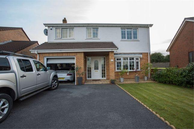 Thumbnail Detached house for sale in Elkington Park, Burry Port, Carmarthenshire