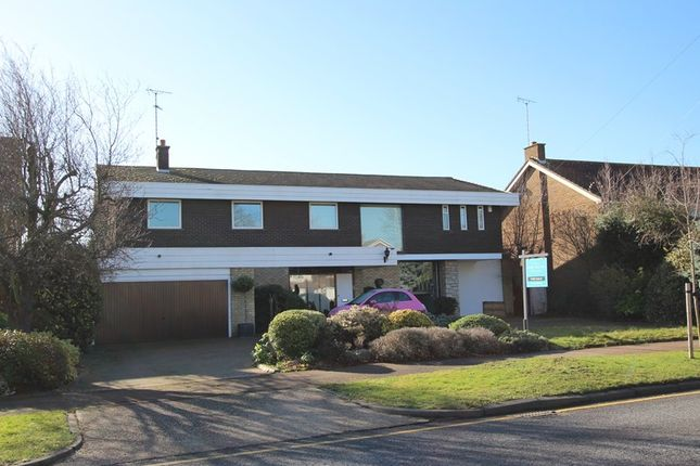 Thumbnail Detached house for sale in Woodgrange Drive, Southend-On-Sea