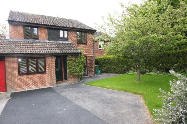 Thumbnail Link-detached house to rent in Falcon View, Winchester