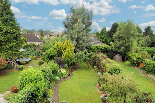 Thumbnail Semi-detached house for sale in Forest Rise, Kirby Muxloe, Leicester