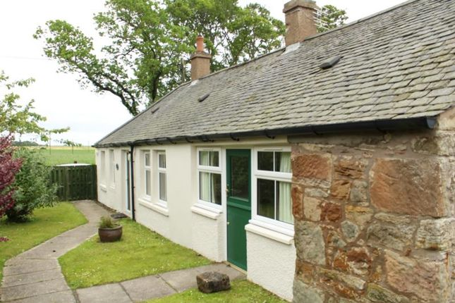 Thumbnail Cottage to rent in The Bothy, Carvenom, By Anstruther