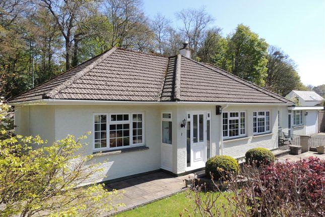 Thumbnail Detached bungalow for sale in Boscundle Close, St. Austell