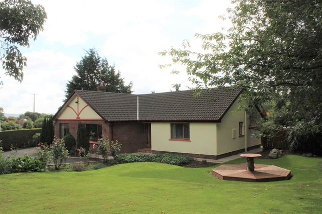 Thumbnail Bungalow for sale in 29 Mcshanes Road, Bessbrook