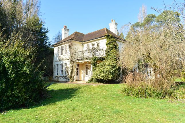 Thumbnail Detached house for sale in Windmill Lane, Avon Castle, Ringwood