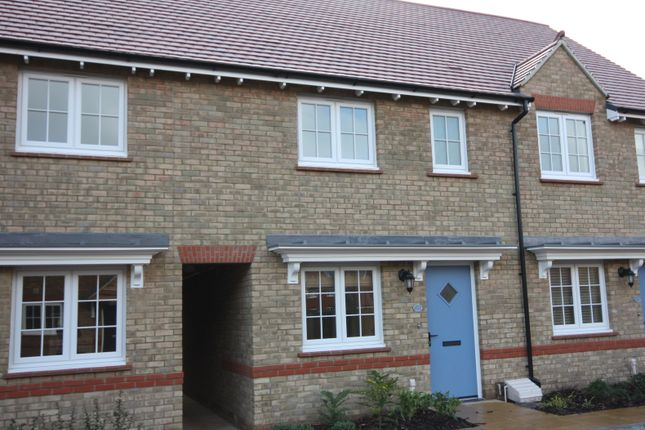 Thumbnail Terraced house to rent in Schofield Close, Taunton