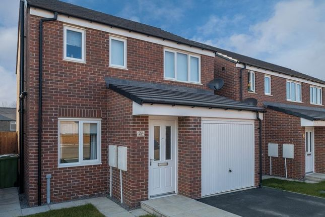 Thumbnail Detached house for sale in Whitethroat Close, Hetton-Le-Hole, Houghton-Le-Spring