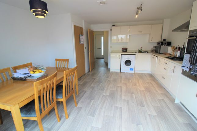 Thumbnail Terraced house to rent in Waddeton Road, Paignton