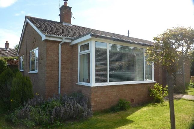 Thumbnail Detached bungalow for sale in Sladeburn Drive, Northallerton