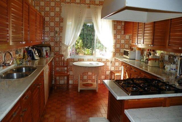 Kitchen of Spain, Málaga, Málaga, Puerto De La Torre