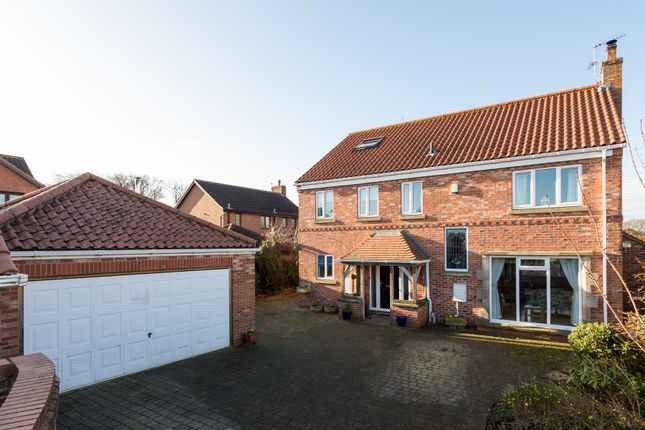 Thumbnail Detached house for sale in Sycamore View, Upper Poppleton, York