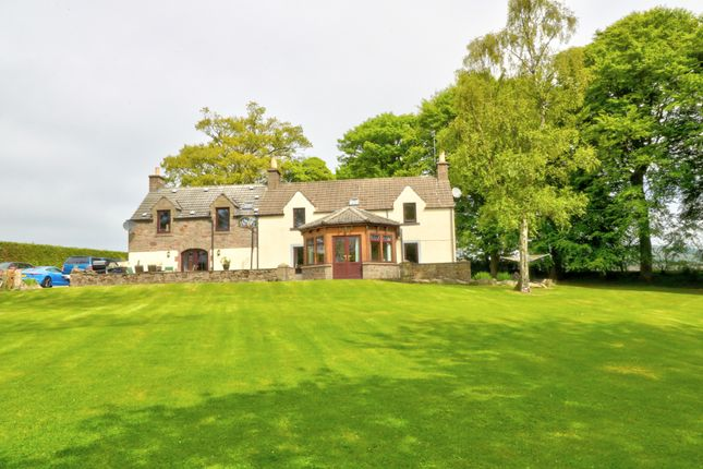 Thumbnail Detached house for sale in Forfar