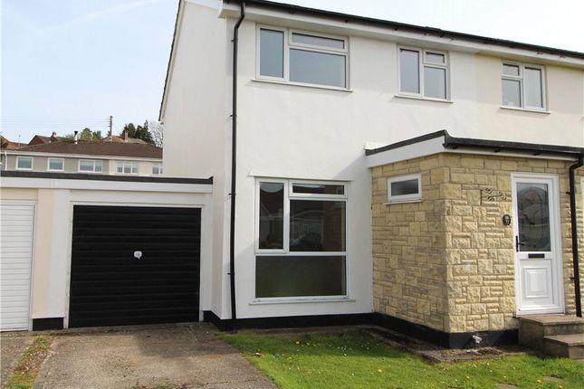 Thumbnail Property to rent in Willhayes Park, Axminster, Devon