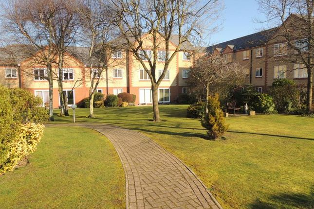 Thumbnail Property for sale in Exeter Drive, Colchester
