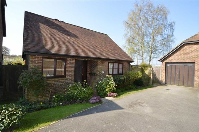 Thumbnail Detached bungalow for sale in Court Meadow, Rotherfield