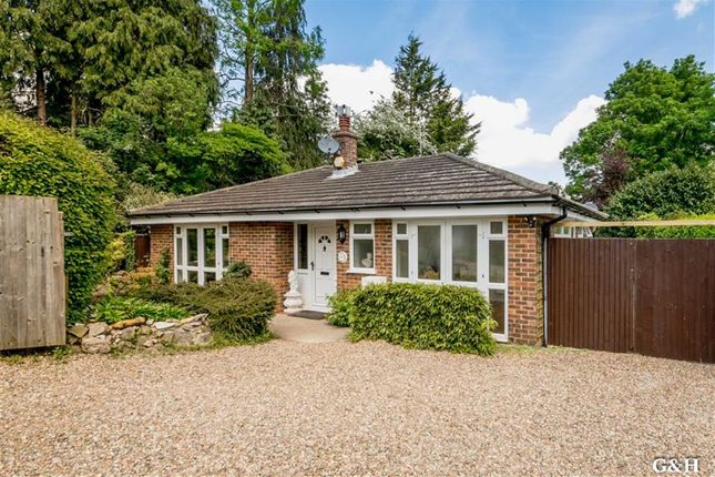Thumbnail Detached bungalow for sale in Northbrooke Lane, Ashford, Kent